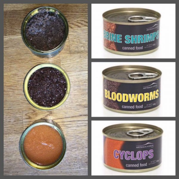 aql-canned-food-bloodworms-100gr-chironomus-in-scatola