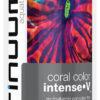 coralcolor-intense-v